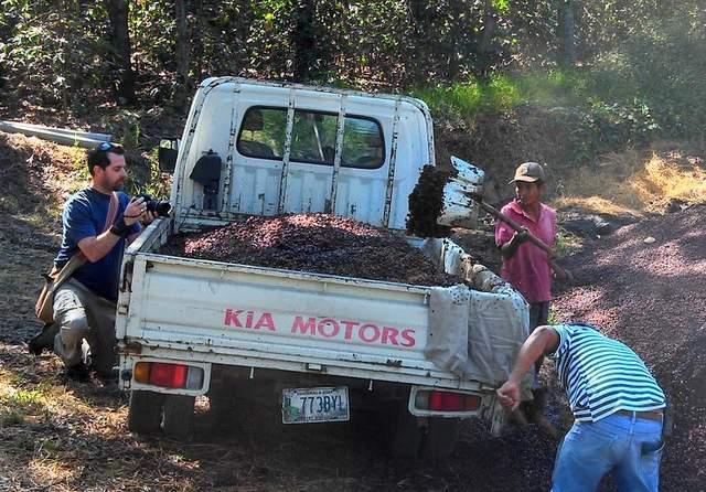 DSLR Video   Coffee Compost in Guatemala
