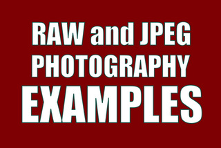 Raw vs JPEG Examples
