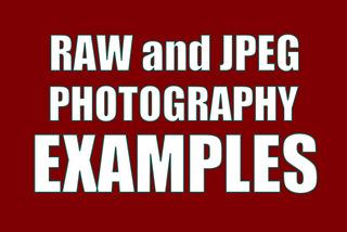 Raw vs JPEG Examples