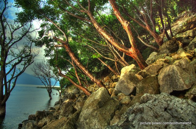Digital Photography Terms - Depth of Field | Landscape Lake Atitlan